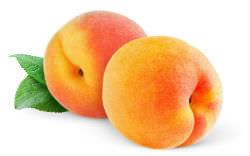 Приметы про абрикос